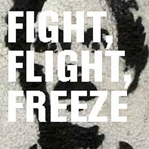 fight flight or freeze